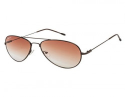 Chevera Aviator Sunglasses BrownCHAT11N