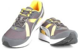 Puma Propeller DP Men Running Shoes