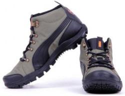 Puma SilicisMid HC DP Men Outdoors Shoes
