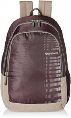 Aristocrat Purple Casual Backpack (BPPEP1PPL)