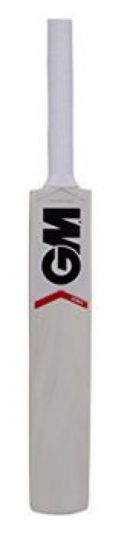 GM Zona Mini Autograph Bat (not meant for playing)