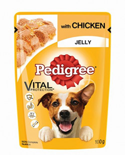Pantry Deal : Pedigree Gravy Adult Dog Food Pouch, Chicken in Jelly, 100g (Sample)