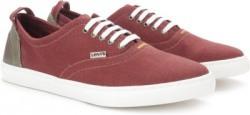 Levi's CANVAS SNEAKER/LACED Men Sneakers