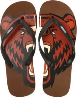 Flipside Wild Bear Flip Flops