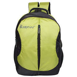 The Blue Pink Leonardo 18 Liters Green and Gray Laptop Backpack