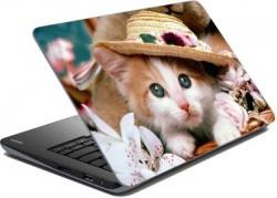 Laptop skins @ just 69