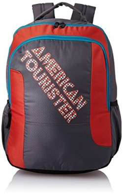 American Tourister 27 Ltrs Grey Casual Backpack (AMT CRUNK 2017 BKPK 06- GREY)