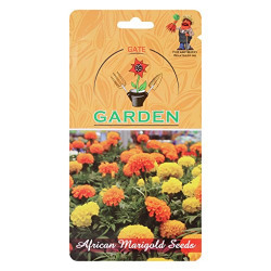 African Marigold orange Flower Seeds by Gate Garden