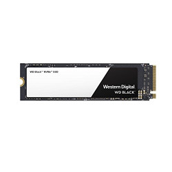 Western Digital 1TB M.2 Internal Solid State Drive (WDS100T2X0C)