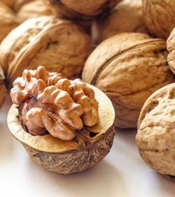 Ancy Exotic Inshell Walnuts(sabut akhrot) 1kg(Pack of 4x250)