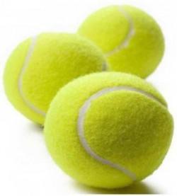 Monika Sports Heavy Cricket Tennis Balls Cricket Tennis Ball(Pack of 3, Green)