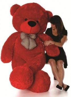 Pocketfriendly red 3 feet teddy bear st c  - 91.55 cm(Red)