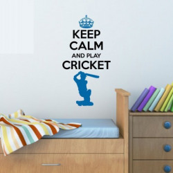 Nilaya by Asian Paints Large Wall Ons Keep Calm Cricket Wall Sticker  Sticker(Pack of 1)