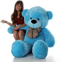 Blue teddy Bear Rs. 599 - Amazon