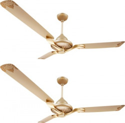 Luminous Jaipur Mahal - Pack of 2 1320 mm 3 Blade Ceiling Fan(Thar Gold, Pack of 2)