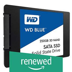 (Renewed) Western Digital 250GB Internal Solid State Drive (WDS250G2B0A)