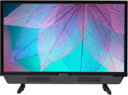 Sansui Pro View 60cm (24 inch) HD Ready LED TV with High Color Transmittance  (24VNSHDS)