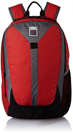 Puma 22 Ltrs Red Casual Backpack (7463801)