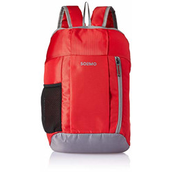 Amazon Brand - Solimo Hiking Day Backpack, 20L, Red