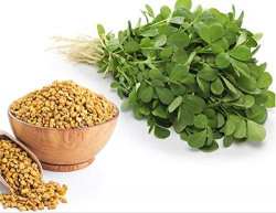 Creative Farmer Vegetable Seeds Methi Fenu Greek Seeds - Methi Fenu Greek Seeds Ancient Spice Plant Seeds For Home Garden Vegetables Home Garden Seeds