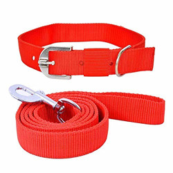 THE DDS STORE Dog Belt Combo of Dog Collar with Dog Leash Specially for Small Breeds Dog Collar Leash Set (Small ( 0.50 inch ), Red)