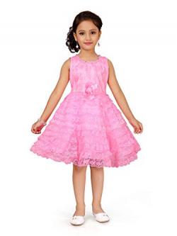 Aarika net a-line Dress (FK-41068_Pink_9-12 Months)