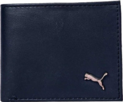 PUMA Men Blue Artificial Leather Wallet(3 Card Slots)
