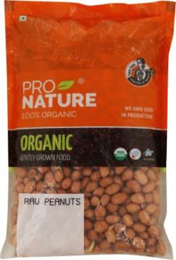 Pro Nature Organic Peanut(500 g)
